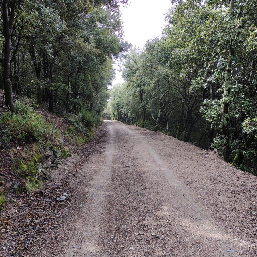 GESA SL redacta ambdós informes de valoració ambiental de dos projectes de pavimentació de camins a Fogars de Montclús dins del Parc Natural del Montseny
